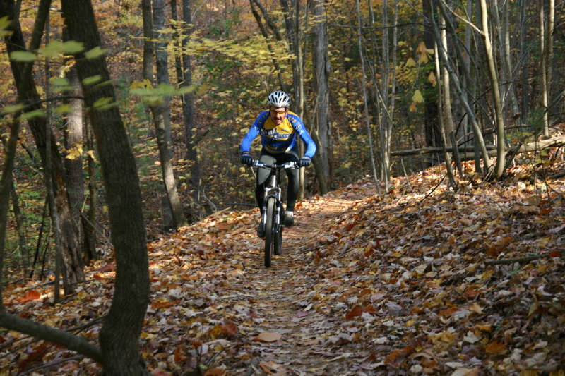 Fall Riding on the OVT. Photo by Richard Fink
