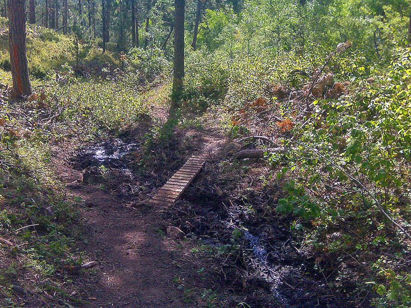 South Fork bridge-View Downhill