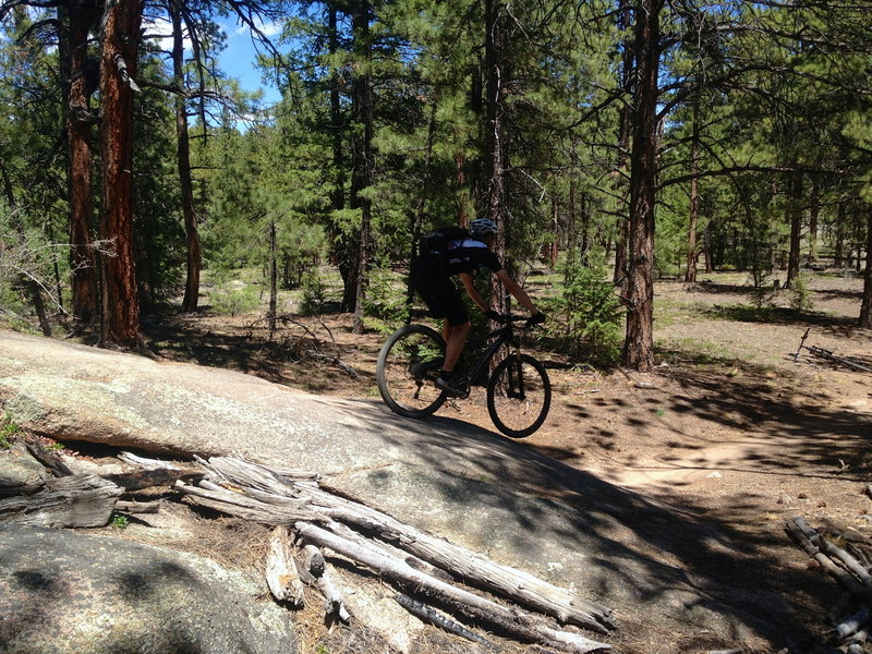 Charlies Cutoff - the best trail in Buffalo Creek is unfortunately one of the shortest!