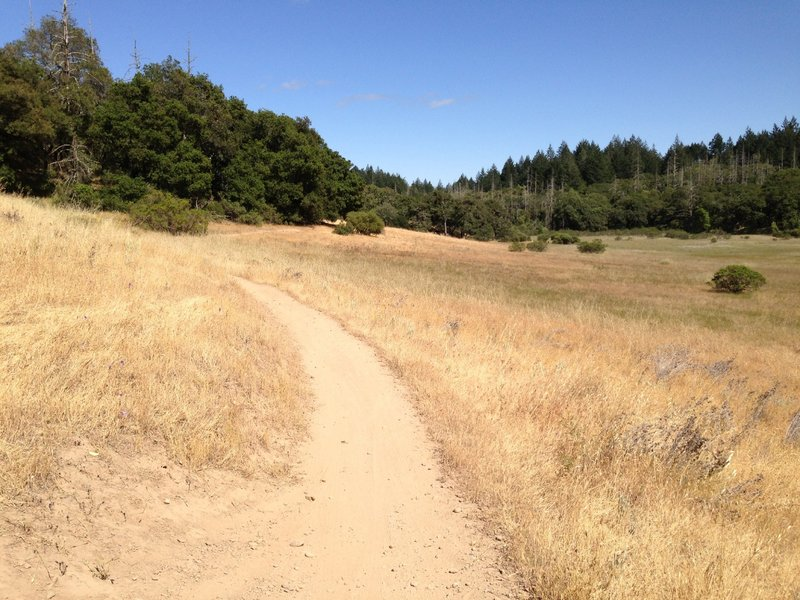 Open and smooth singletrack.