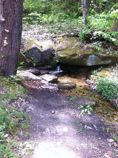 Sandstone springs - good, safe water source