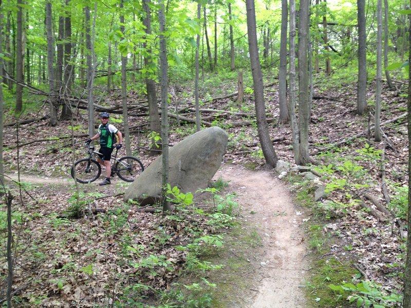 Large rock landmark on the trail.