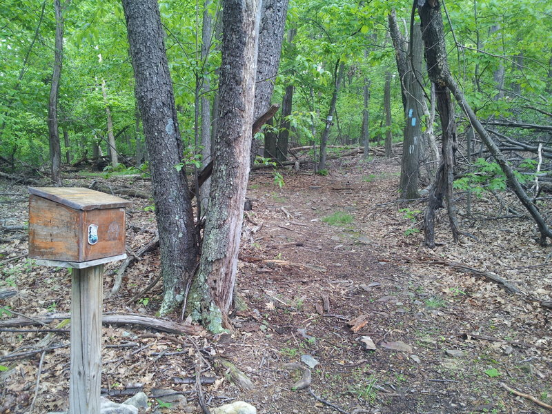 Write a note on the notebook in this box to say you were here.  There's a shelter to the right.  Stay left for trail.