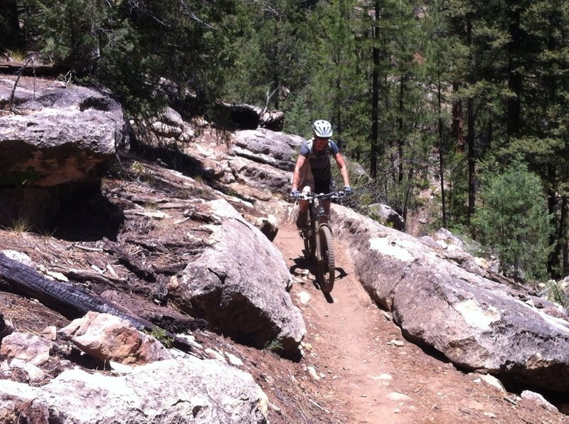 Walnut Canyon Rim Trail is an excellent example of why I love MTBing in Flagstaff.