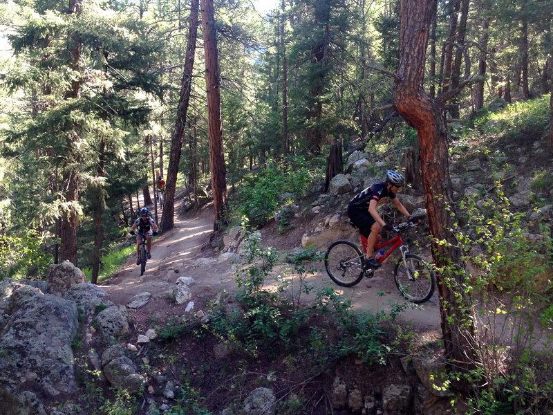 The big-ish initial climb up Bear Creek Trail