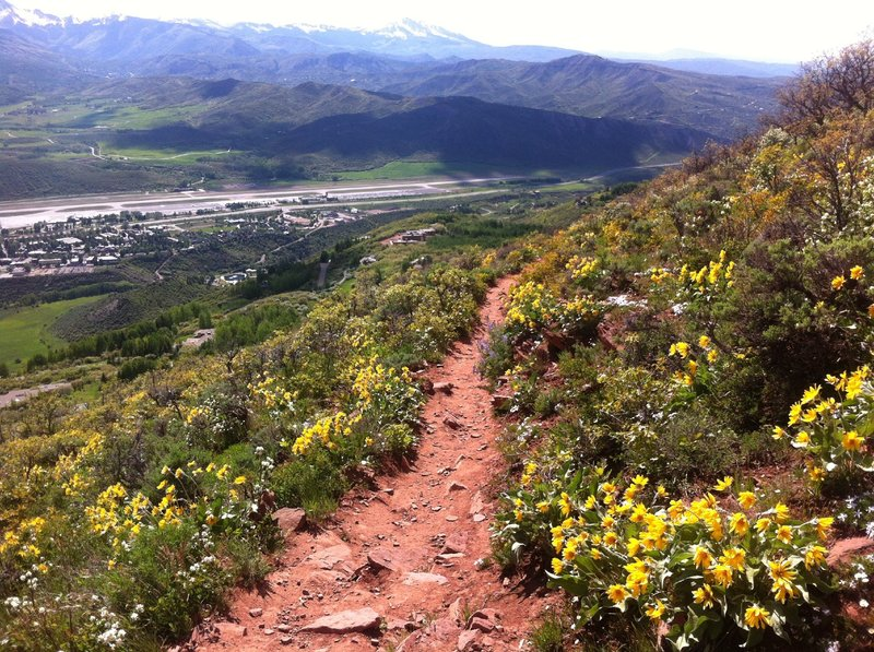 Lower Sunnyside trail.  The trail turns to red rock once below the aspen groves.