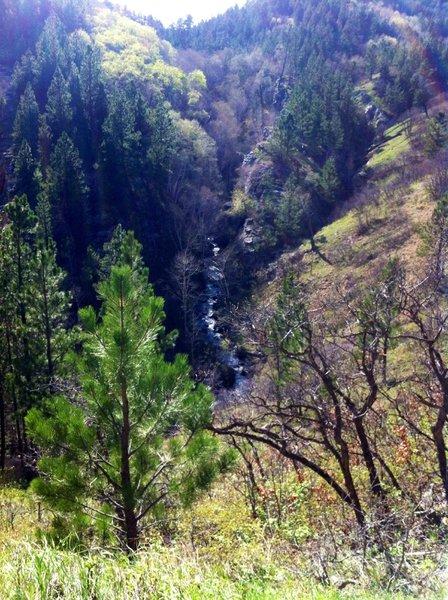 Ogden Creek flowing vertically