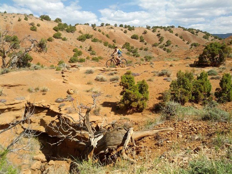 Mothers Day Mountain Biking on Corkscrew