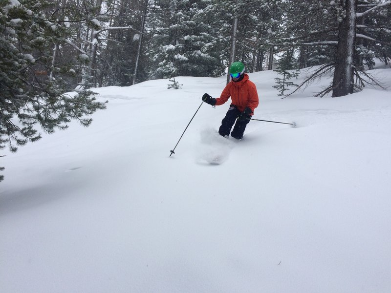 Easy skiing at the top of Long Division