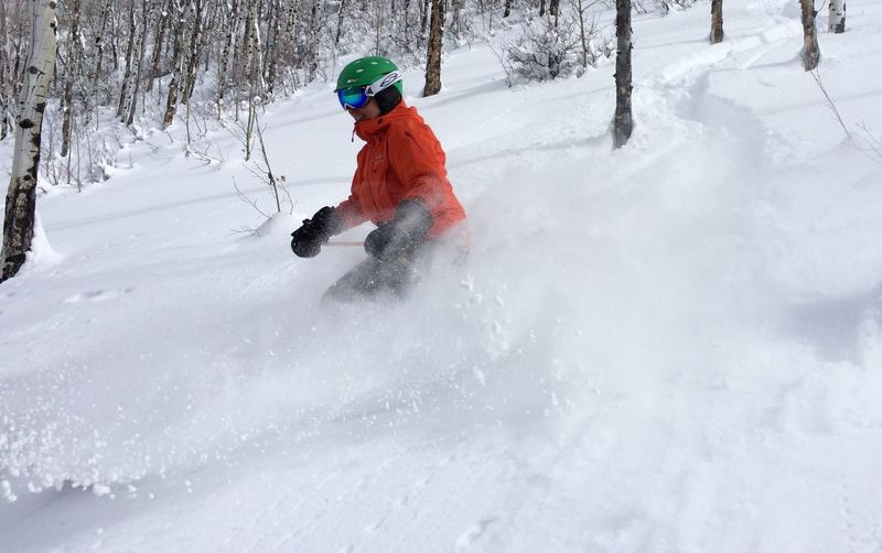 Deep snow in the lower West Vail Trees
