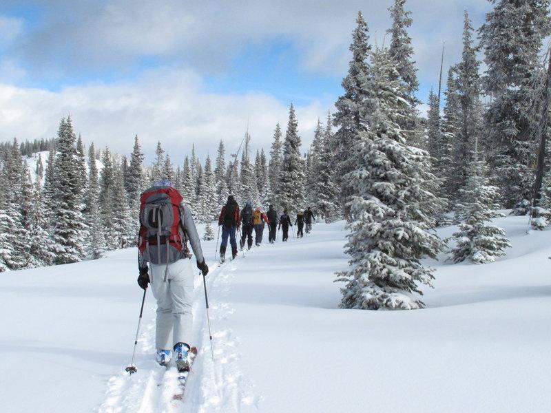 Headed towards the Polar Meadows ski zone.