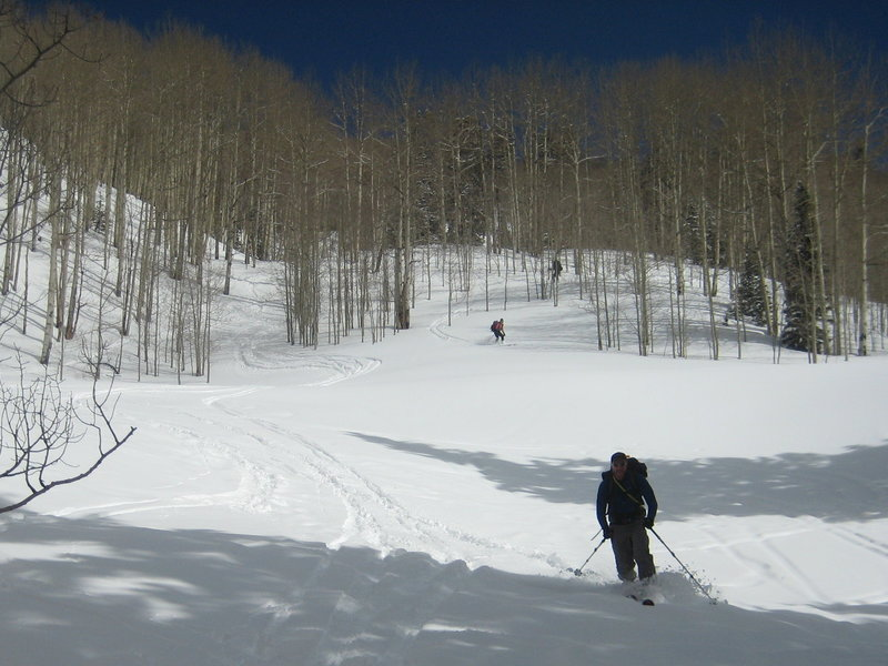 Taking the aspen shortcut down from the hut