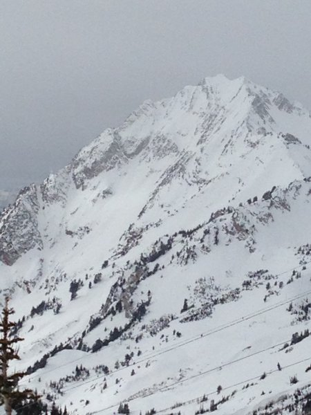 The southern & eastern flanks of Superior as seen from Grizzly Gulch. Suicide Chute is the obvious line on the far left.