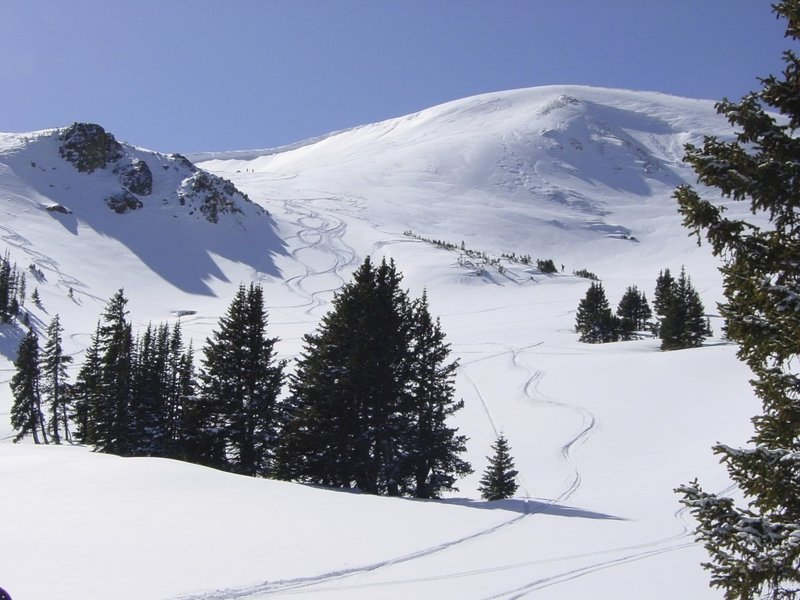 Looking back up Skullbite area. The North chutes of Mt. Russell can be seen to the right.
