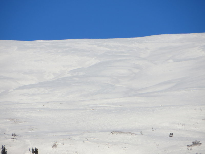 View from below of Devil May Care. The line descends the ridge between the two central gullies.