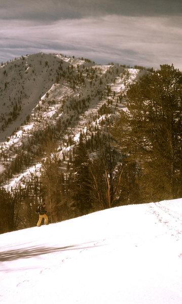 Titus Ridge.