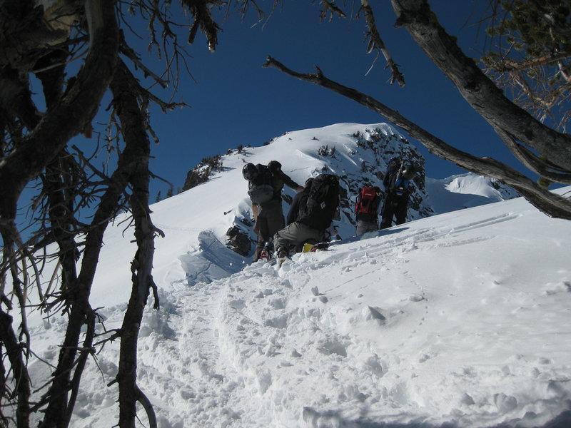 Looking toward the summit of Albright Peak.