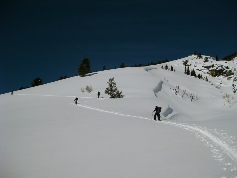Down low on the ascent to Albright Peak.