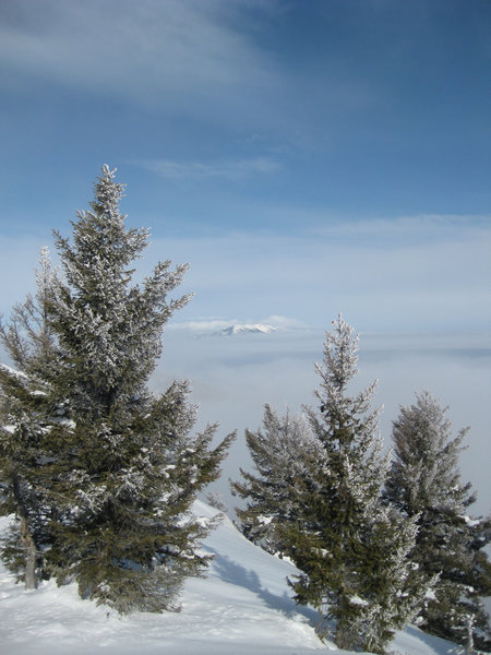 The Bridger Range above a sea of clouds as viewed from Mount Ellis.