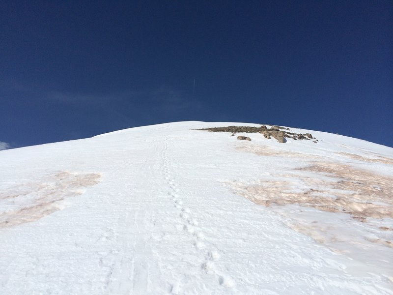 The last leg of the approach.  On the upper ridge-line of Red Peak.