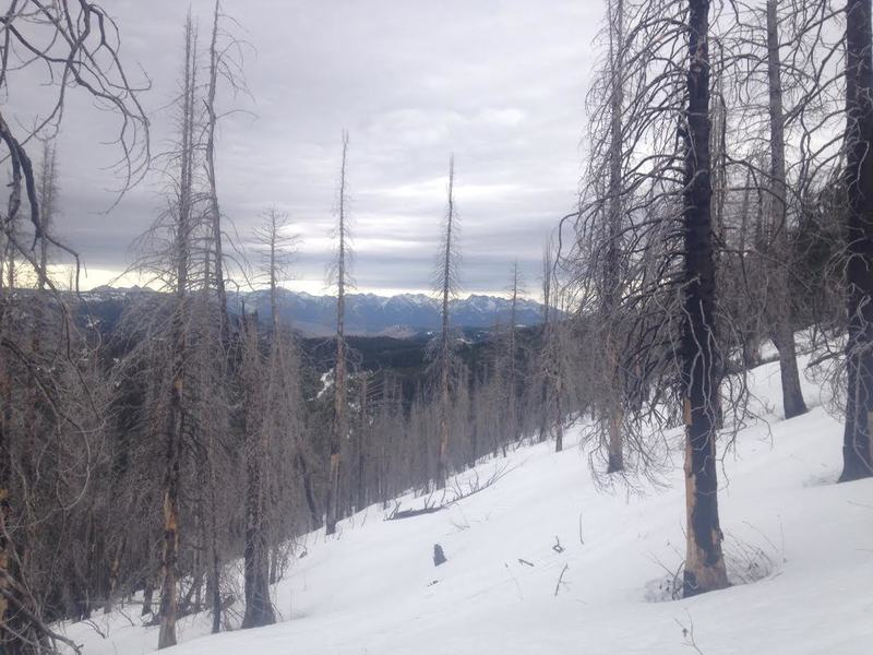 Looking SE across the some of the skiing terrain. A small burn area.