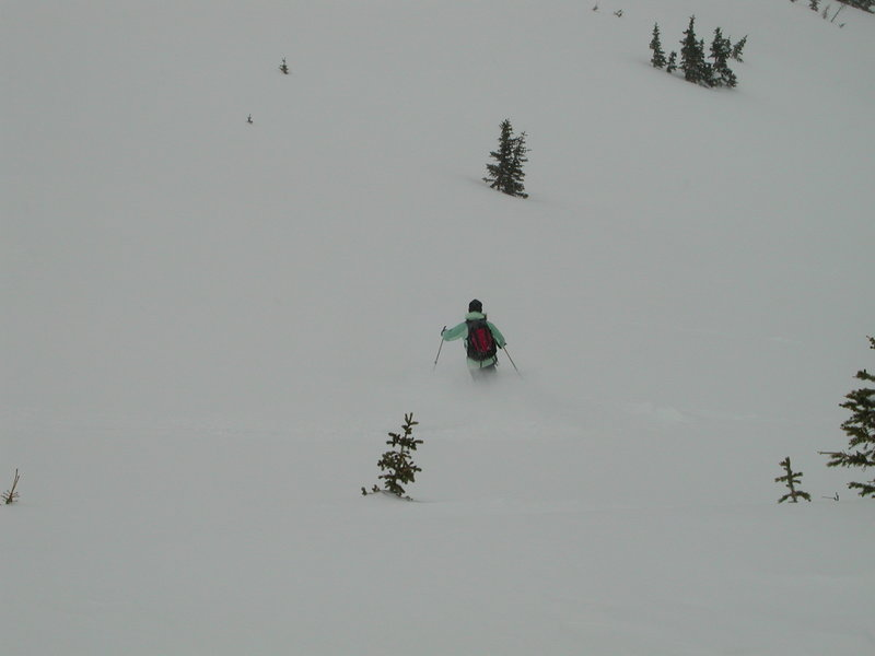 Skiing the Lost Lake glades