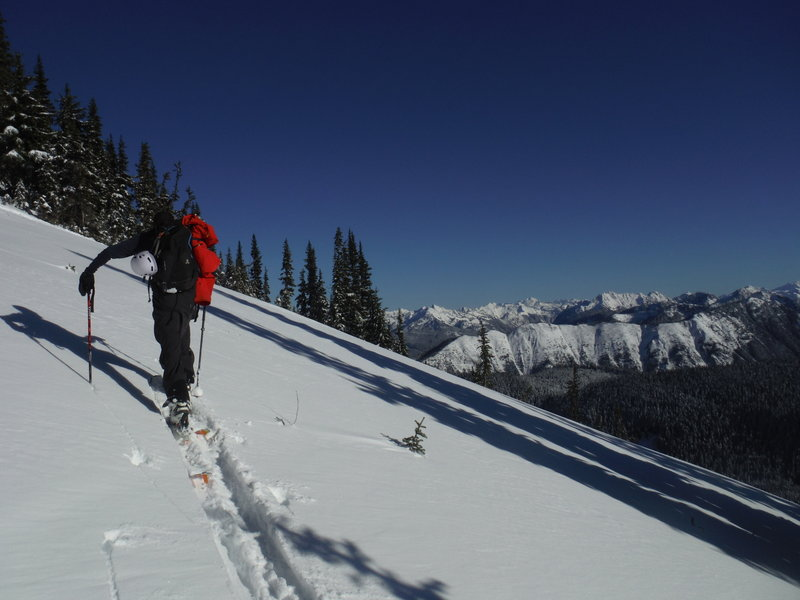 Skinning with a view.