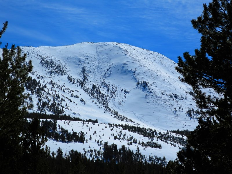 Mt Olsen, 11183', from Virginia Lakes Rd. A variety of 30-40 degree north facing slopes to choose from with easy access.