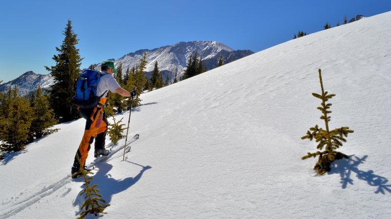 There is some short but fun tree skiing above the old trails.