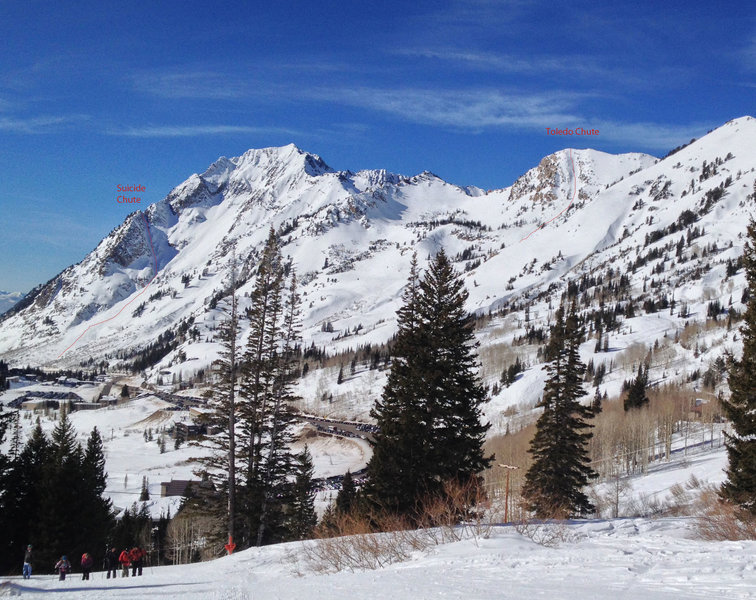 Toledo Chute from Alta Ski Area