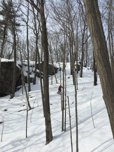 Pine Mountain Easy Descent