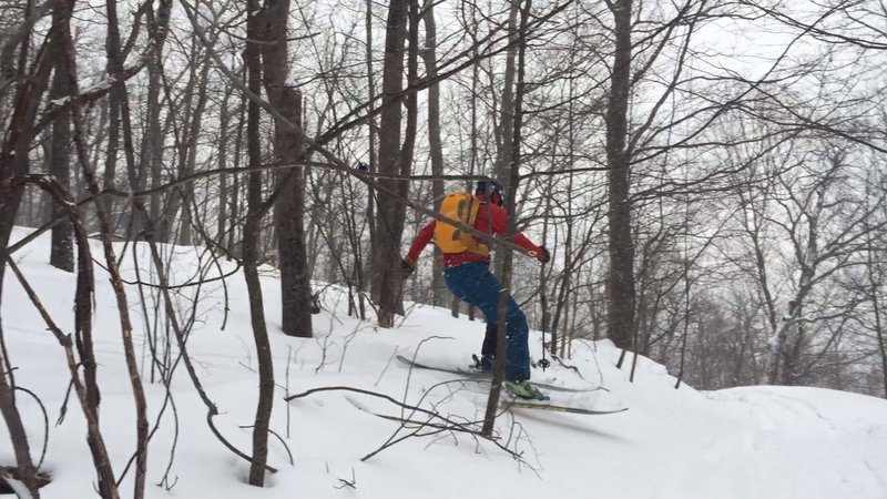 Dropping out of the middle glades and crossing a hiking trail on the way down.