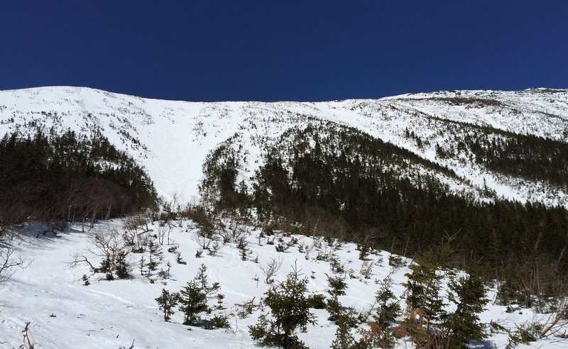 Bottom of Gulley #1 - April 13th, 2015