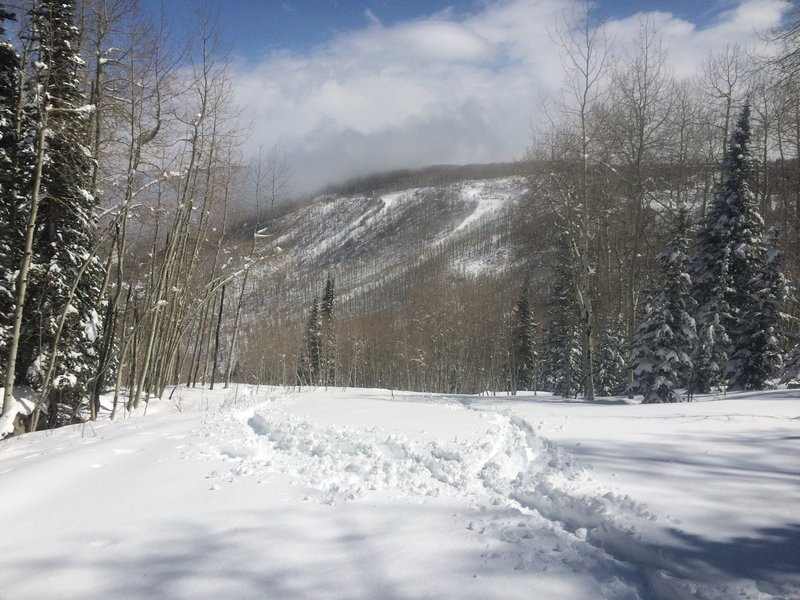 Here is the top of Prewis, there is an old Cat trail at the back of this flat clear area that leads to the Lift Run