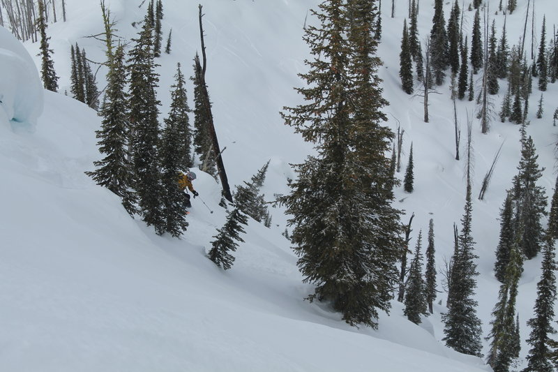 Dropping in to the upper section.  Brady gets some powder in the trees.