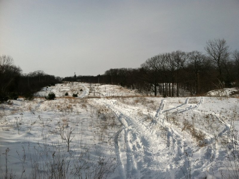 The old, abandoned ski trail atop Mt. Tom makes for a great tour.