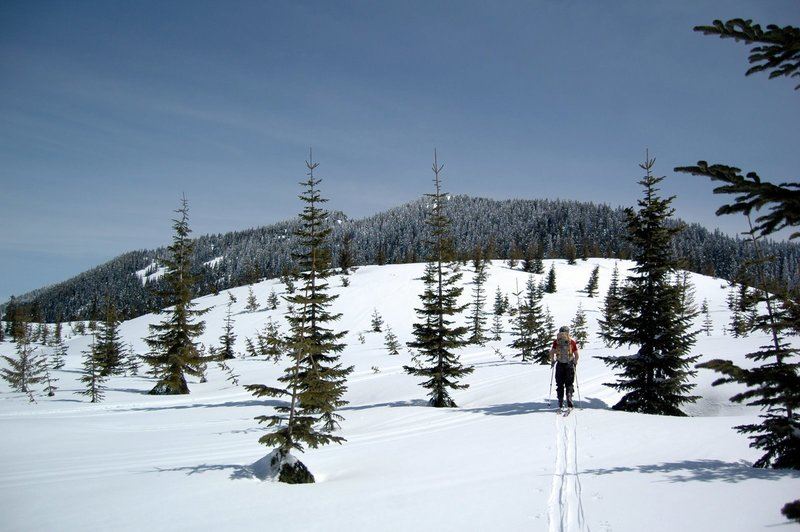 Heading up toward the summit and old-growth forests of Mt. Margaret is both beautiful and fun!