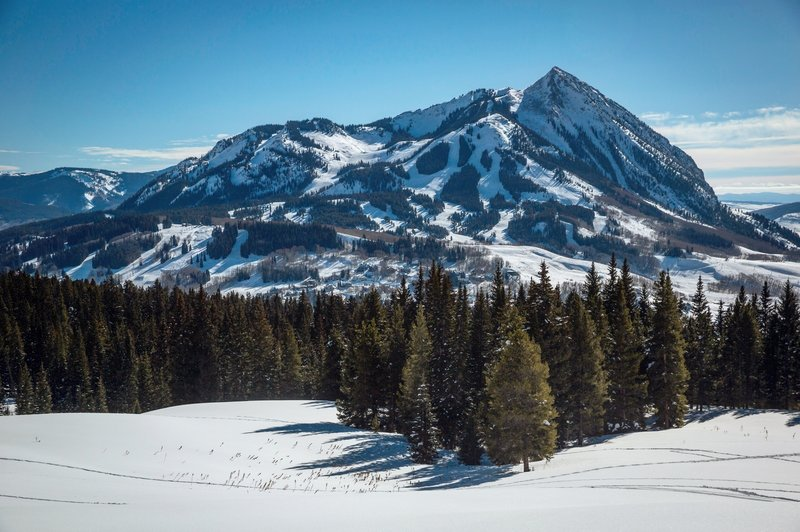 The view of Mt. Crested Butte from the meadow on Snodgrass is sublime.