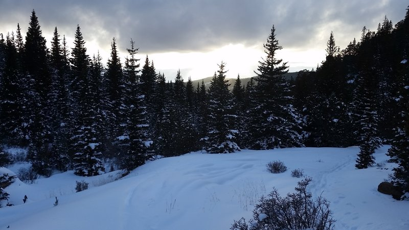 This is the view looking west from a clearing near the end of the Lower Devils Playground Trail.