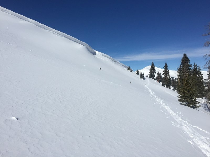 This is a view of the top section between the cornice and trees.