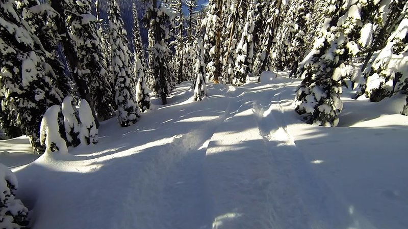 The upper run has small open pockets hidden in the thick trees.