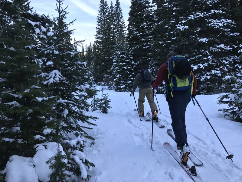 Sliding through first light on the Rogers Pass Trail for access to Arapaho Lakes and Crater Lakes .