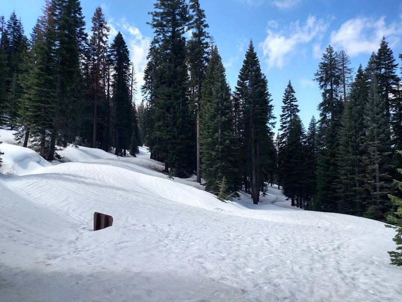 The third switchback on the way to Black Butte.
