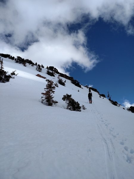 This is what to expect near the beginning of the skin-track switchbacks.