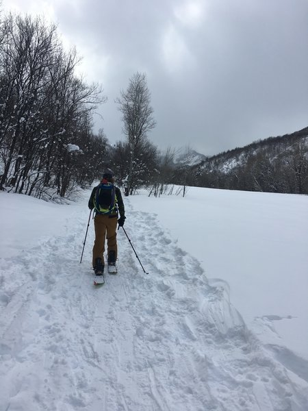 First half of skin in is very tracked out by hikers and snow shoes