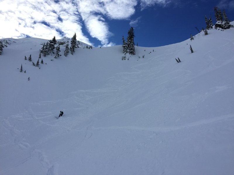 Descending Blueberry Bowl.