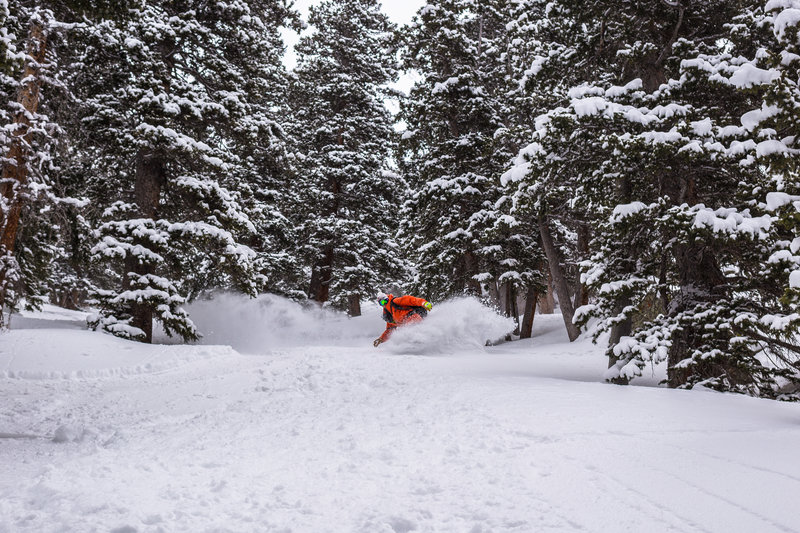 Shredding the Pinky Trib on a Spring pow day