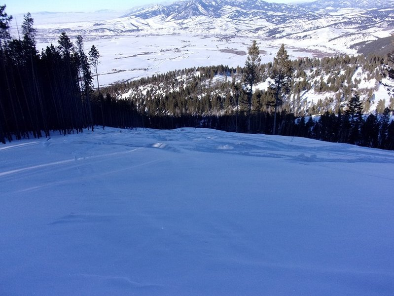 Looking down East Line of Little Ellis - down open slopes east of line of lodgepole pines