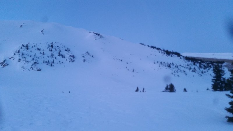 Ptarmigan is the rightmost face in the picture