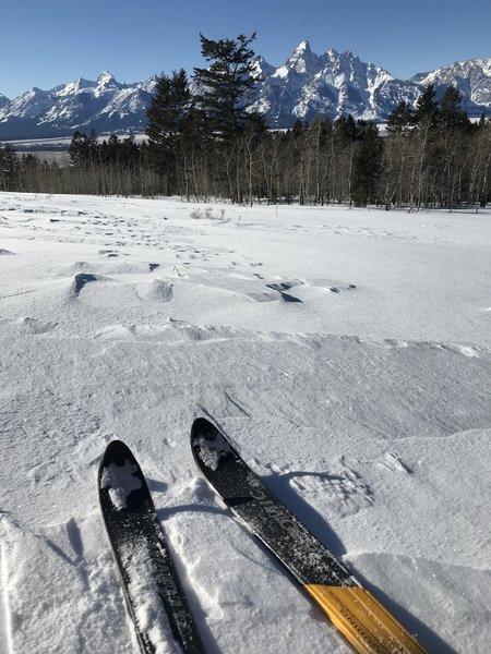 Gorgeous views of the Tetons
